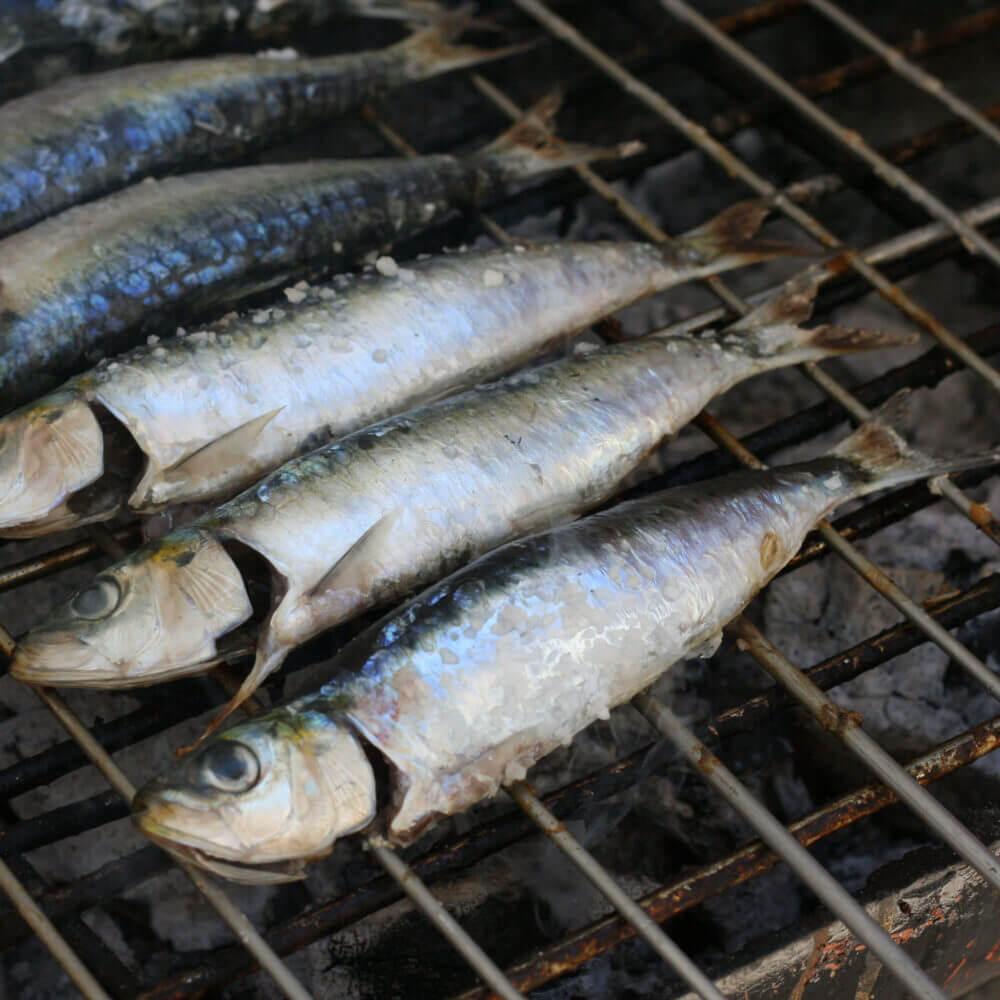 Verwöhnen Sie sich mit dem besten frischen Fisch