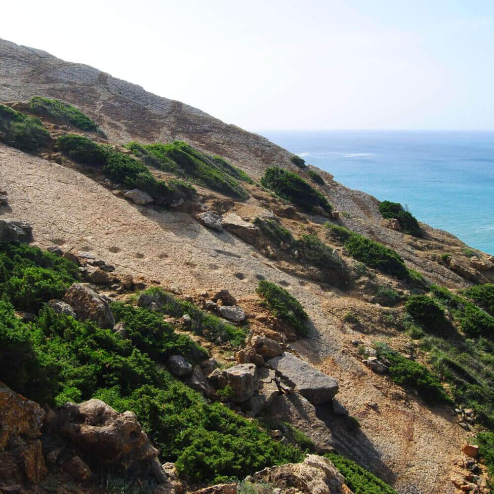 Fußabdrücke von Dinosauriern in den Felsen von Cabo Espichel